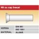 Nit cu cap inecat DIN661 ISO1051 alama